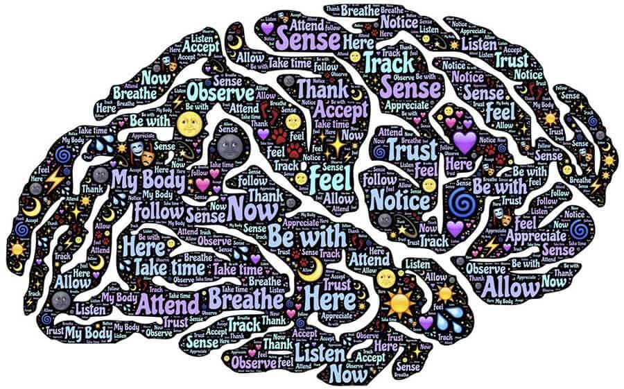 meditation brain graphic