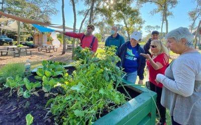 community gardeners looking at crops