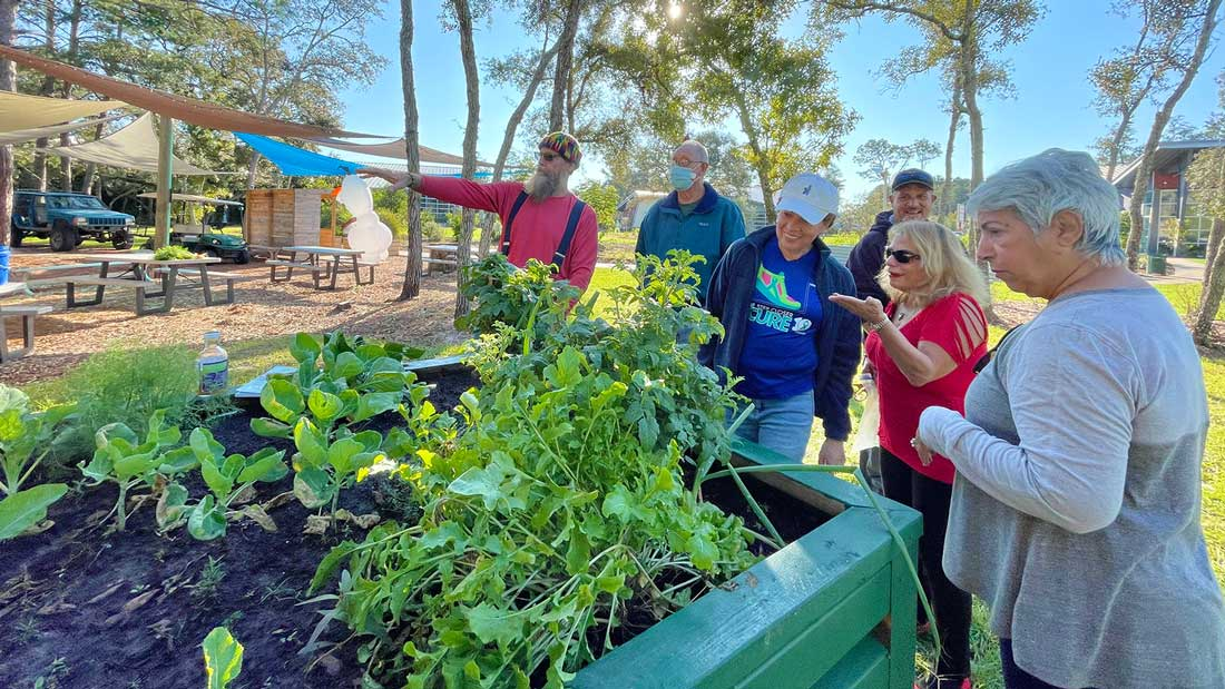 community gardeners looking at crops